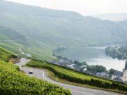 WRC, Germany, Rallye Deutschland