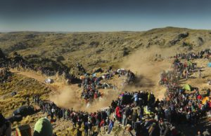Rally Argentina, M-Sport