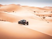 Red Bull Desert Wings, Cyril Despres